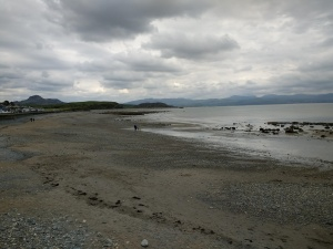 criccieth shoreline